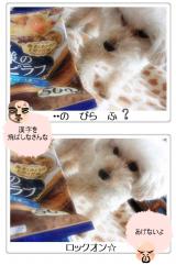 「マルハニチロのレイショク ☆☆ 人気投票TOP3 ☆☆」の画像(11枚目)