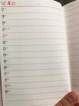 PAGEM[ペイジェム]手帳  ☆(2回目)の画像(4枚目)