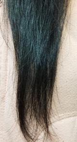 """髪の内側から""""髪の骨""""を補修!シズクコラーゲンの画像(8枚目)"""