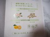 日本酒酵母×乳酸菌「プモア」化粧水&クリームモニター<日本盛>の画像(4枚目)