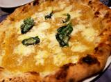 本場ナポリのピッツァ店~LA FIGLIA DEL PRESIDENTE~@横浜 関内の画像(7枚目)