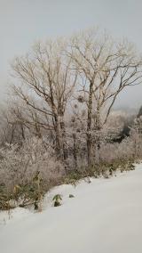 当選品とこんな冬がいい。の画像(4枚目)