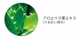 【アクアリファイ二ングローション】★モニター★の画像(5枚目)