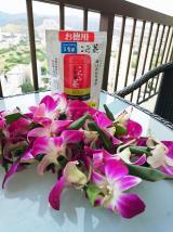 Hawaii☆日本から持ってきた⑤☆海外旅行に欠かせないものの画像(4枚目)