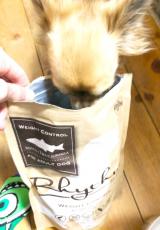 リズム 愛犬に食べさせたい!ドッグフード♡ベルお食事中♡の画像(2枚目)