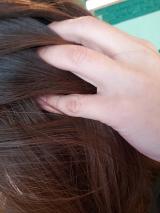 ◆◇長春毛精◆◇の画像(4枚目)
