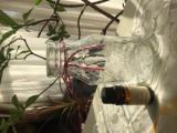 「手作り自家製芳香剤」の画像(1枚目)