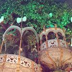 🎀以前サンリオの知恵の木にて撮影した写真。.今年は恋愛できるとイイナ♪...#愛の木に願いを#メリーチョコレート#monipla#mary_fan#過去picのInstagram画像