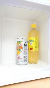 保冷保温両用、持ち運びに便利な冷温庫!『BESTEK 冷温庫』の画像(4枚目)
