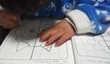 「パズルは天才への第一歩!」の画像(6枚目)