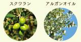 Nitta Biolab ニッタバイオラボ Moist Herbの画像(2枚目)