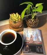 「エクーア シベットコーヒー 豆 50g (ジャコウネココーヒー、コピルアック」の画像(4枚目)