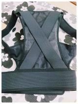 猫背スッキリ♪マジコ姿勢サポーター&ドクターマジコ キョウセイベルトplusの画像(6枚目)