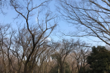 「石神井公園でブランコ♥と、最近使っている保湿スティック♥」の画像(3枚目)