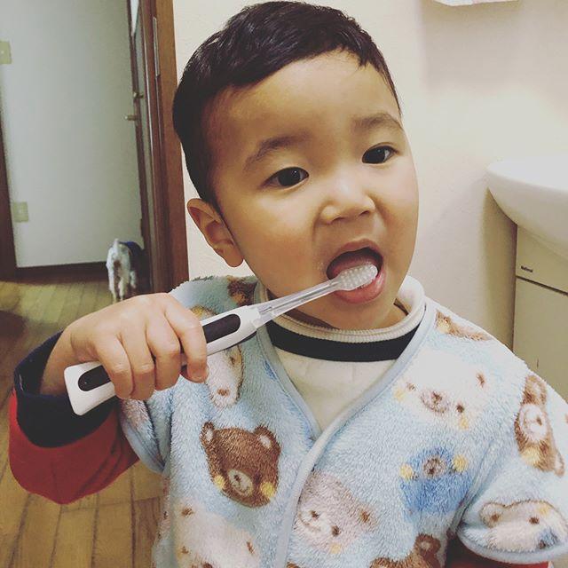 口コミ投稿:自分で磨くのも好き😁ペンギンさんの歯ブラシで、しっかり磨いてツルツルになります😊🌸…