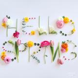 「春です~♪」の画像(1枚目)