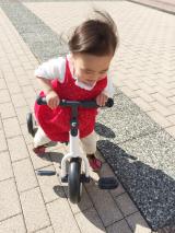 「三輪車デビュー」の画像(9枚目)