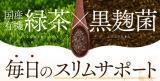 毎日飲みたい常用健康茶発見!国産オーガニック 発酵緑茶の画像(7枚目)