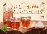 毎日飲みたい常用健康茶発見!国産オーガニック 発酵緑茶の画像(23枚目)