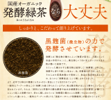 毎日飲みたい常用健康茶発見!国産オーガニック 発酵緑茶の画像(19枚目)