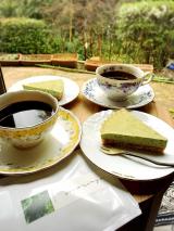 「モリンガパウダーで美味しいレシピ!」の画像(1枚目)