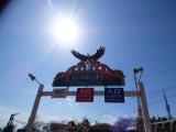 「3人息子と春休み♡生駒山上遊園地行ったでぇ~」の画像(11枚目)