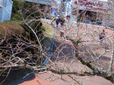 「3人息子と春休み♡生駒山上遊園地行ったでぇ~」の画像(25枚目)