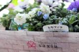 お花長持ち saxia「サクシア」プランツパズルの画像(6枚目)