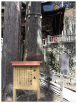 「三峰神社: 食いしん坊@うずちゃん日記」の画像(6枚目)