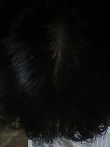 ビタブリッドCヘアー③の画像(1枚目)