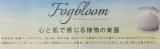【ありがとうございました】 バスルームを植物の楽園へ★フォグブルームボディソープ 3/3の画像(2枚目)
