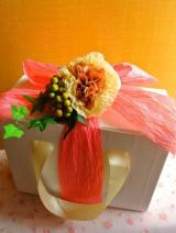 口コミ記事「麗人花のゴールドプラセンタでアンチエイジング」の画像