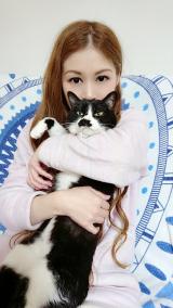 「キングアガリスク100 ペット用 ♡愛猫チャッソにアガリスク♡」の画像(9枚目)