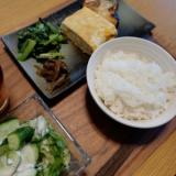 【体験記】 木村式自然栽培米ナチュラル朝日 2kgの画像(8枚目)