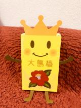 【レビュー】073 大島椿株式会社様 豪華!大島椿スペシャルBOXの画像(7枚目)