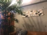 名古屋に水素吸入できるトコ。の画像(3枚目)