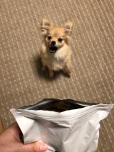 お試し308⭐️ ドッグフード無添加安心本舗の「無添加ドッグフード安心」の画像(10枚目)