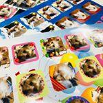 アプリを使ってシールを作ってみました。アプリをダウンロードして、スマホの中の写真を選んで枠を決めて保存します。何個か作って、台紙を選びます。台紙の上に画像を配置。注文します。旅行に…のInstagram画像