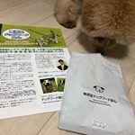 ♡無添加ドッグフード安心小型犬でも食べやすい大きさ♪* 抗菌剤を使用せずに善玉菌を増やして腸本来の機能を高める安心安全な無添加フードです。*一般的なドッグフードと比べると少量ですむ…のInstagram画像