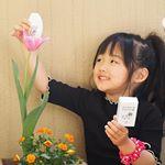 幼稚園から持って帰ってきたチューリップが咲いたよ🌷ピンクがいいな〜って言いながら水あげ頑張ってて大好きなピンクが咲いたから大喜びしてたよ❤︎記念にパシャり📸❤︎.ゆっち…のInstagram画像