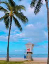 Hawaii旅行記2019・・・1日目の画像(1枚目)