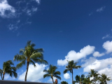 Hawaii旅行記2019・・・1日目の画像(7枚目)