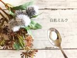 【低刺激】無添加化粧品のPUFE(ピュフェ)のスキンケアコスメ6種類試してみた【高保湿】の画像(10枚目)