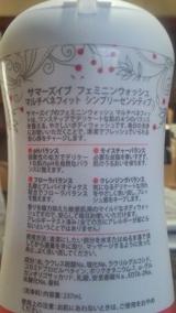 サマーズイブ ~ピルボックス ジャパンの画像(3枚目)
