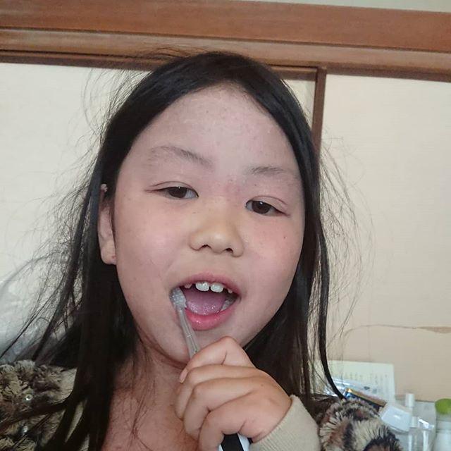 口コミ投稿:イオン歯ブラシ使ってみました。ペンギンの歯ブラシで子どもにも握りやすい設計にな…