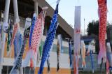 女川観光旅行の画像(2枚目)