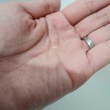 PELLE ALOE♡アロエの保湿力の画像(5枚目)