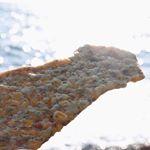 @yuttyosan777  さんからイカは海でしょってコメントいただいたので海まで🏖キラキラ眩しいね(o^^o)#いかの姿あげ #懐かしいお菓子 #バリバリ食感 #ロングセラー商品 #ホット…のInstagram画像