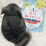 ※母の日のプレゼントでしゅよ🐭10※えーん😭パックにハマってるし……毛穴の悩みがあるから。治るかなー?🤣※@monipla_official  @pdc_jp 様ありがとう…のInstagram画像