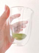 ♡玉露園♡この濃さがたまらない〜新茶の季節に抹茶味がおいしい『濃いグリーンティー』♡の画像(2枚目)